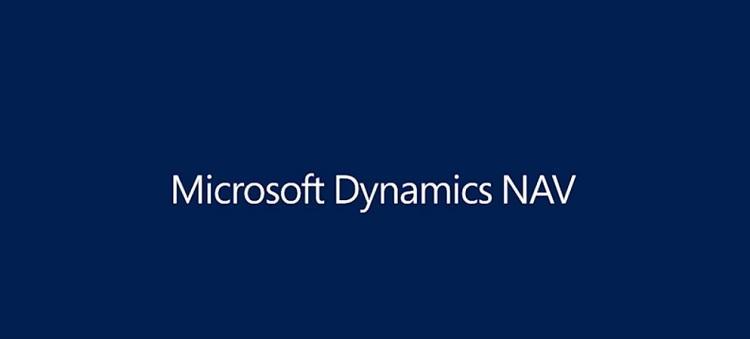 Desarrollador Dynamics NAV