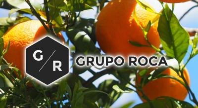 Grupo Roca